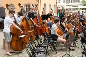 Contrebasses et violoncelles