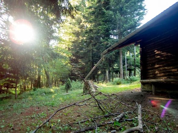 Une cabane de bûcheron