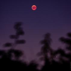 Le ciel, la lune et l'eclispe lunaire